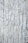 Old Patterned Wooden Background In Grey Or Light Blue With Flaked Color.