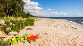 Beach view near Ystad