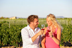 image of french toast  - Red wine drinking couple toasting at vineyard - JPG