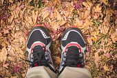 Feet Man Stand On Fall Leaves Outdoor With Autumn Season Nature
