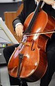Постер, плакат: Close Up Of A Cellist Playing A Cello