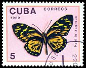 Vintage  Postage Stamp. Butterfly  Papilio Zagreus.