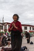 Praying Old Tibetan Woman