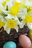 daffodils with eggs