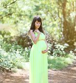 Beautiful Pregnant Woman In Dress Outdoors On Nature