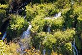 Flowing Water On Falling Lakes Of Plitvice
