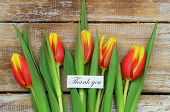 Thank you card with red and yellow tulips