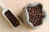 Coffee beans in jute bag and on wooden scoop