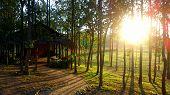 The Beautiful Sunset in Chiangmai thailand