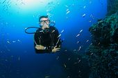 Scuba diving and exploring coral reef underwater in ocean