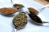 Dry Spices, Fennel Close Up View