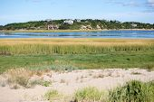 picture of cape-cod  - Bay water and grass in Welfleet Cape Cod - JPG