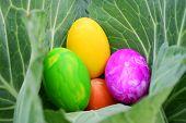Happy easter, easter egg for design
