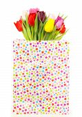 Bunch Of Colorful Tulips In A Gift Bag