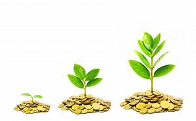 stock photo of piles  - trees growing on piles of golden coins - JPG