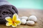 stock photo of frangipani  - White frangipani on towel in the spa - JPG
