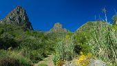 stock photo of municipal  - Inland Gran Canaria Valsequillo municipality view towards Roque Grande from Tenteniguada hiking path - JPG