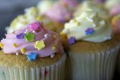 picture of sprinkling  - This is a photograph of Vanilla cupcakes topped with Pink and Yellow buttercream, and colorful sprinkles