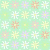 stock photo of chamomile  - Seamless chamomile vector flower pattern chamomile multicolor - JPG