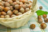 picture of cobnuts  - Hazelnuts in a wicker basket on the table - JPG