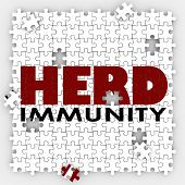 stock photo of immune  - Herd Immunity words on puzzle pieces to illustrate vaccination to protect society or community to be immune from disease or sickness - JPG