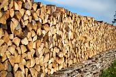 image of firewood  - view to firewood outdoors on sunny day - JPG