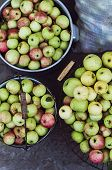 Постер, плакат: Harvest time apples Organic fresh apples in basket Fresh appl