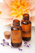 pic of massage oil  - Massage oils and waterlily on white background - JPG