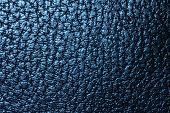 Blue leathery texture