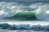 Stormy Coastal Waves