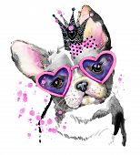 Cute Dog. Dog T-shirt graphics. watercolor Dog illustration background. watercolor funny Dog for fas poster