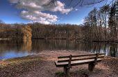 Wald und Park bench