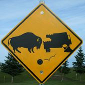 stock photo of recreational vehicles  - Sign warning of the impending dangers of hitting a buffalo - JPG