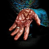 stock photo of mehendi  - Henna - JPG