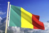 Mali Flag (Clipping Path)
