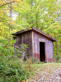 Autumn Leaves Maine, Red Shed