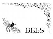 Bees intermingled in corner flourish (bees' lower bottom shaped like a bee hive as showen in large corner bee)