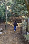 Boy hiking in woods