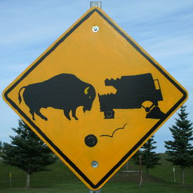 picture of recreational vehicle  - Sign warning of the impending dangers of hitting a buffalo - JPG