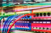 Server rack with blue and red internet patch cord cables connected to black patch panel in data serv poster