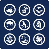 Seasons: Spring icons To see all icons, search by keywords: