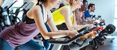 Very fit Asian woman and her friends on fitness bike in gym poster
