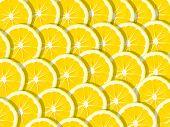 Fresh Lemon (lemons) Pattern On Pink Background. Minimal Concept. Summer Minimal Concept. Flat Lay poster
