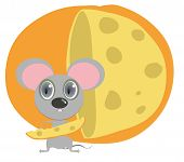 Little Mouse Hold Peace Of Cheese