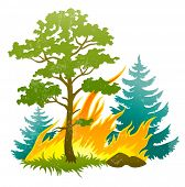 wildfire disaster with burning forest tree and firtrees vector illustration isolated on white backgr