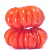 a pair of wrinkled zapotec heirloom tomatoes on a white background