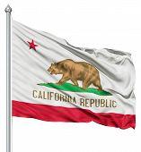 Waving Flag of USA state California