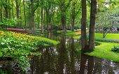 Tranquil Water Canal In A Lush Beautiful Green Woodland Garden With Dense Foliage. poster