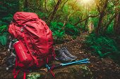 Red Backpack And Hiking Gear Set Placed On Rock In Rainforest Of Tasmania, Australia. Trekking And C poster