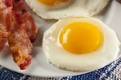 foto of yolk  - Organic Sunnyside up Egg with toast and bacon for breakfast - JPG